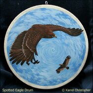 SPOTTED EAGLE DRUM ------SOLD------