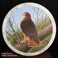 RED TAIL HAWK DRUM I ~~~~~SOLD~~~~~