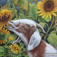 SUNFLOWERS & GOAT ~detail~