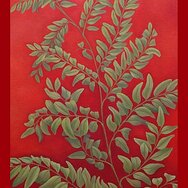 FERN WITH RED BACKGROUND