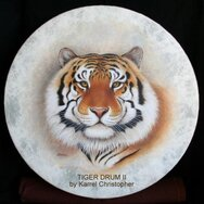 TIGER DRUM II ~~~~SOLD~~~~