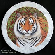 TIGER DRUM IV ~~~~~~SOLD~~~~~